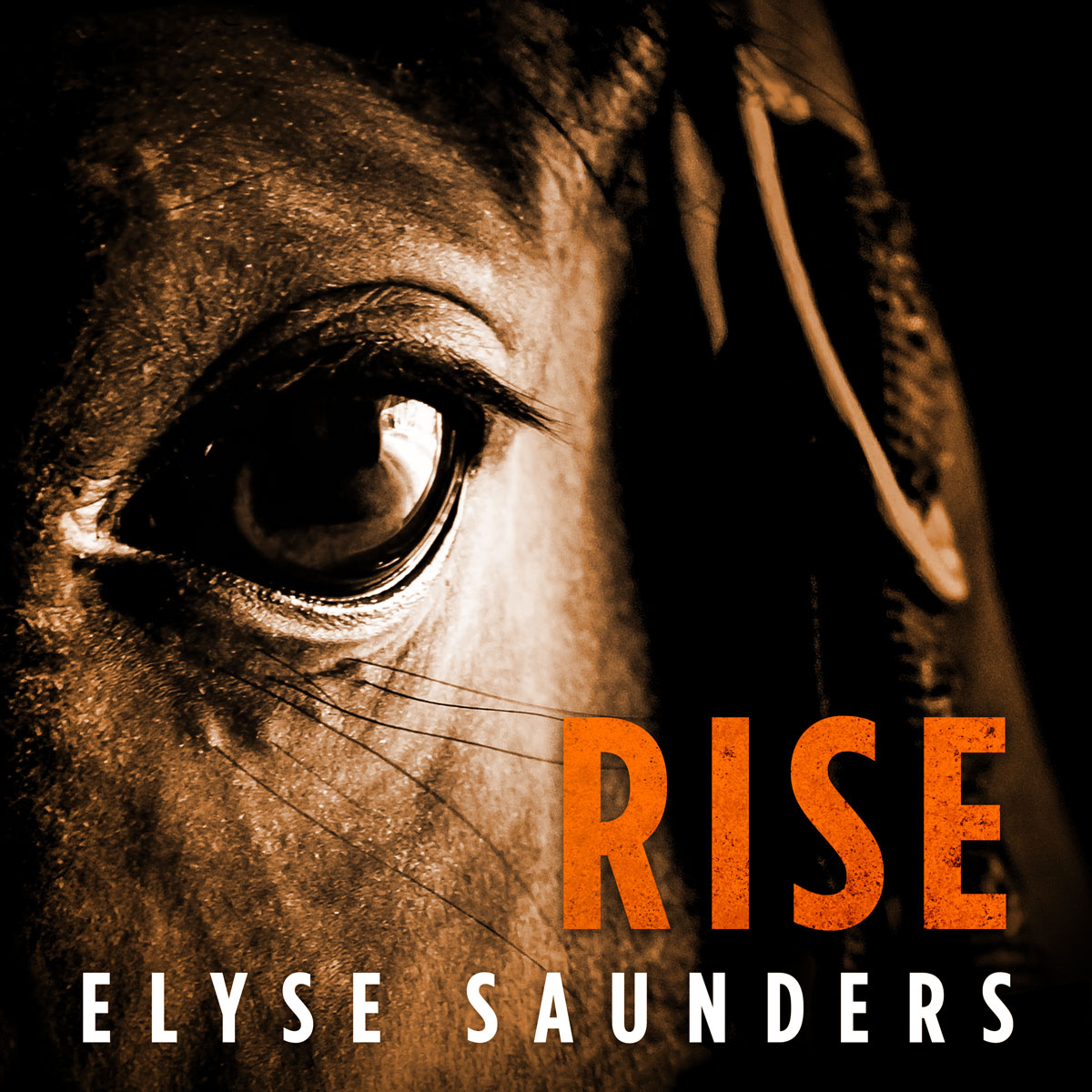 rise-cover-web